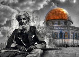 لو أننا كنا أفغانا .. لما ضاعت فلسطين