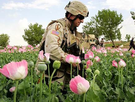 لا يوجد لدى الإمارة الإسلامية أي مكان لإنتاج المخدرات وادعاءات الجنرالات الأمريكية حول هذا الموضوع عارية عن الصحة