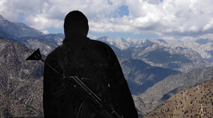 الحركة الجهادية : أزمة الواقع و البحث عن مخرج (3 من 3)