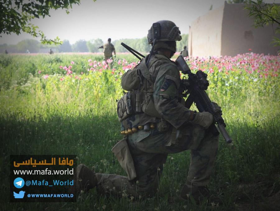 أفيون أفغانستان تحت أضواء مضللة