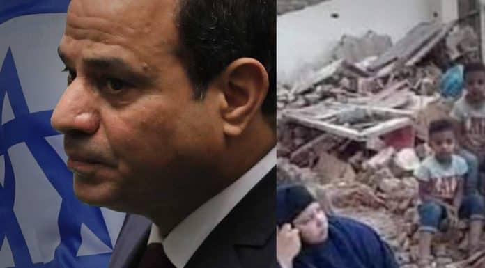 مصر : ثورة بعد فوات الأوان (1و2)